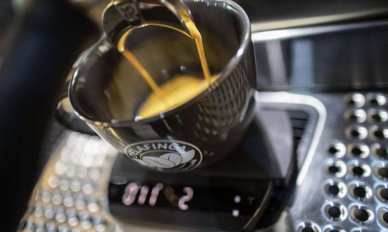Drinking coffee every day can change brain structure, study finds